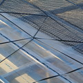 Photos: ビニールハウスの風対策