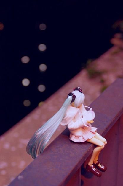 写真: ソメイヨシノと1