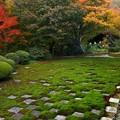 Photos: 東福寺・方丈庭園14