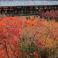 Photos: 東福寺・方丈庭園09