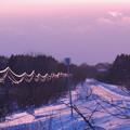 Photos: 天然イルミ110