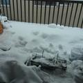 Photos: 14.2.8雪13.30