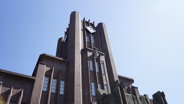 写真: 東京大学 #310