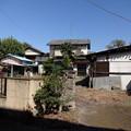 Photos: 小山27