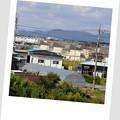 Photos: 小山31