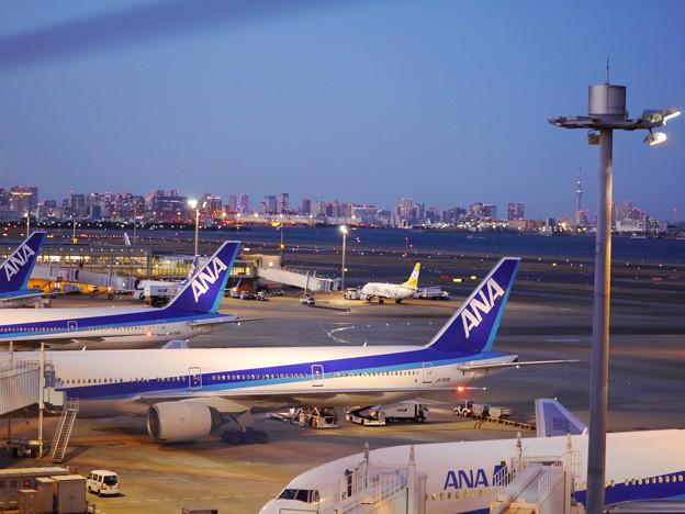Photos: 夜の飛行場