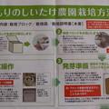Photos: シイタケ栽培キット1