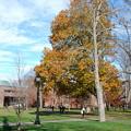 The Campus 11-2-12