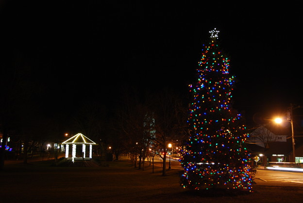 The Christmas Tree and the Gazebo 2012