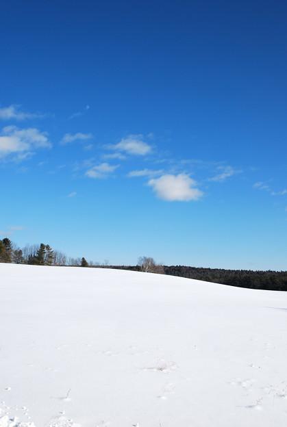 Photos: The White Hill 12-31-12