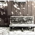 Photos: The Bench at Center Day Camp 5-27-13