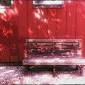 The Bench by the Red Wall 5-27-13