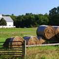 Photos: The Stack of the Bales 8-25-13