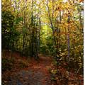 North Loop Trail by Sara and Clean 10-11-13
