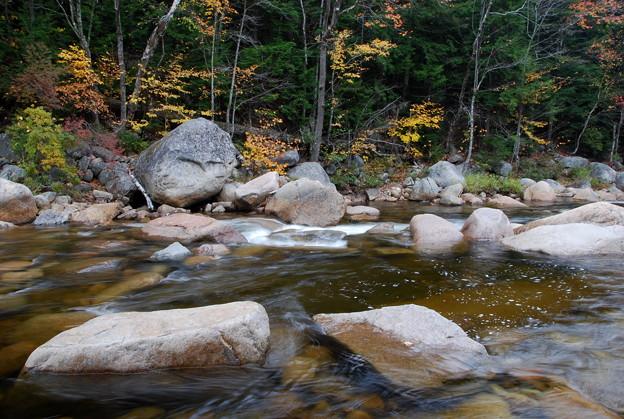 Downstream 10-12-13