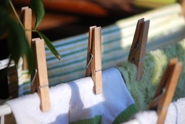 Green Laundry 11-23-13