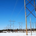 Photos: Power Lines 2-8-14