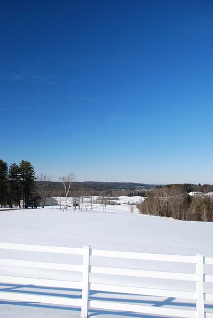 Photos: The White Fence 2-8-14