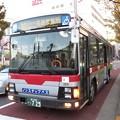 Photos: 20131123 (17)