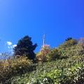 写真: 青へ登る