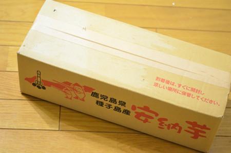 国華園安納芋(通常品) (1)