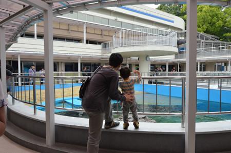 水族館 (12)