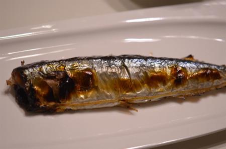サンマを焼く (8)