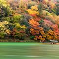 Photos: 京都嵐山