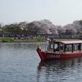 男川舟遊び