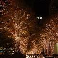 Photos: 丸の内の夜