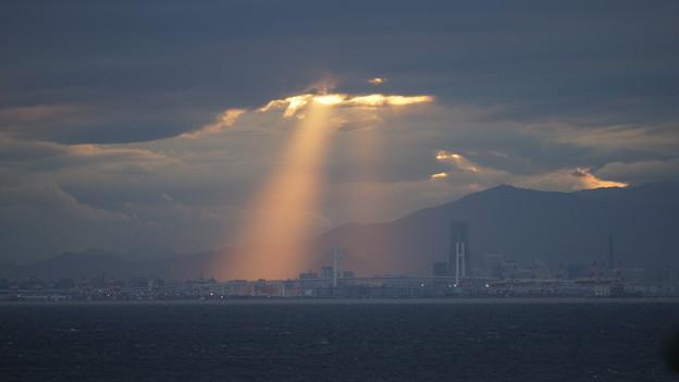 Spotlight YOKOHAMA