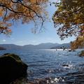 Photos: 煌めいて・・・中禅寺湖