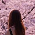 Photos: 花見人