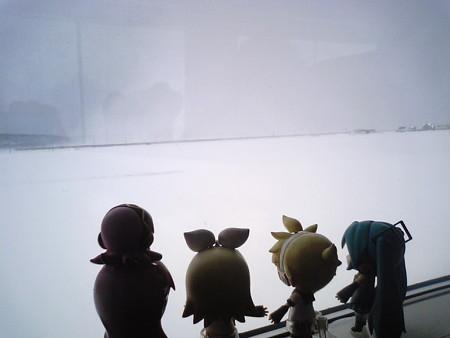 青森→蟹田間、左堰付近。 リン:「スーパー大雪原なうー♪♪」