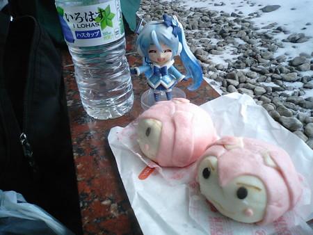 雪ミク:「お昼ご飯は、新発売の桜ミクまんですね♪」