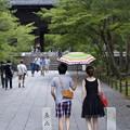Photos: 相合い傘