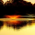 写真: 燃ゆる噴水