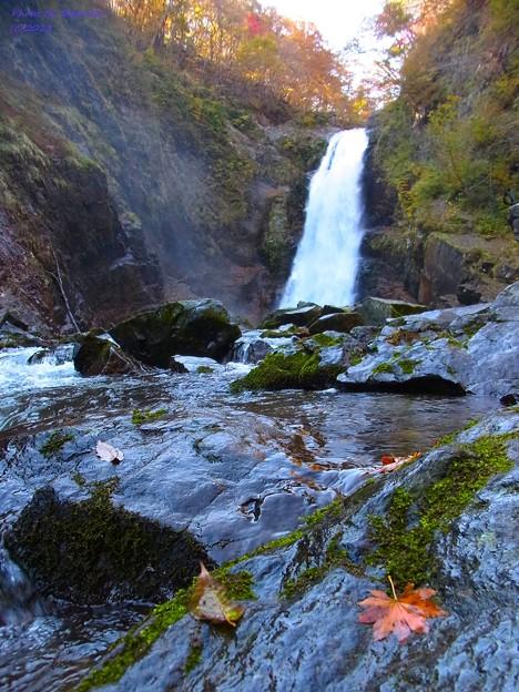 落ち葉と秋保大滝