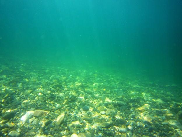 食見海水浴場 水中