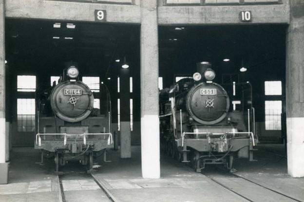 C11とC55