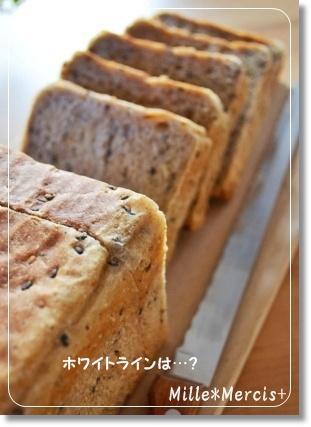 マルチシリアル角食@酒種