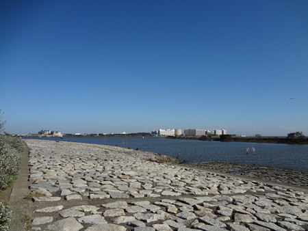 葛西臨海公園・舞浜方面を望む
