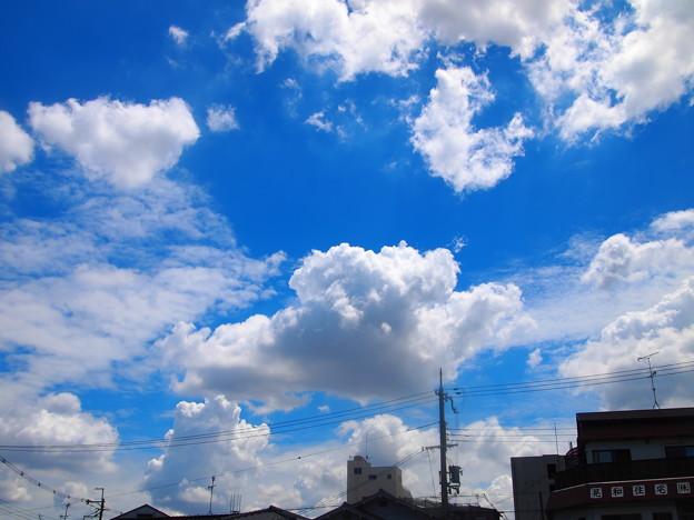 雲雲雲雲雲‥。