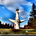 Photos: 太陽の塔