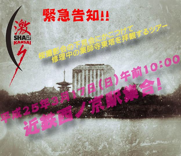 大和郡山桜撮影会の下見会