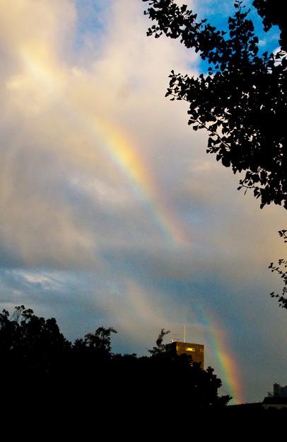 虹 台風通過後