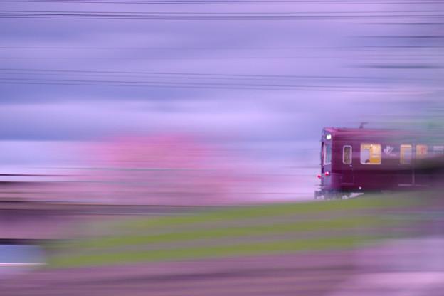 写真: 春色の汽車に乗って