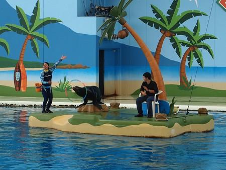 浮島で演技