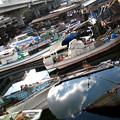 横浜 入江川