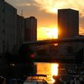 横浜 横浜市場